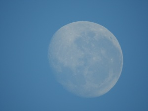 17-09-09-moon-broulee