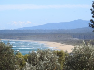 2-17-04-tarouga-beach-from-jemison-point